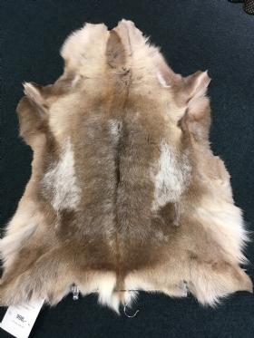 rensdyr pynte skind